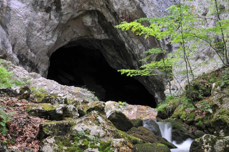 Foto: Centrul de promovare si informare turistica Bosorod