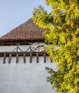 Foto: Stiftung Kirchenburgen / Fundatia Biserici Fortificate