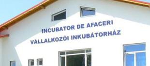 Primăria Târgu Secuiesc a obţinut o finanţare în valoare de 1,7 milioane de lei pentru un proiect ce are ca scop construirea unui incubator de afaceri.
