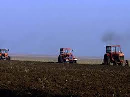 La Braşov se comasează suprafeţe tot mai mari de teren agricol