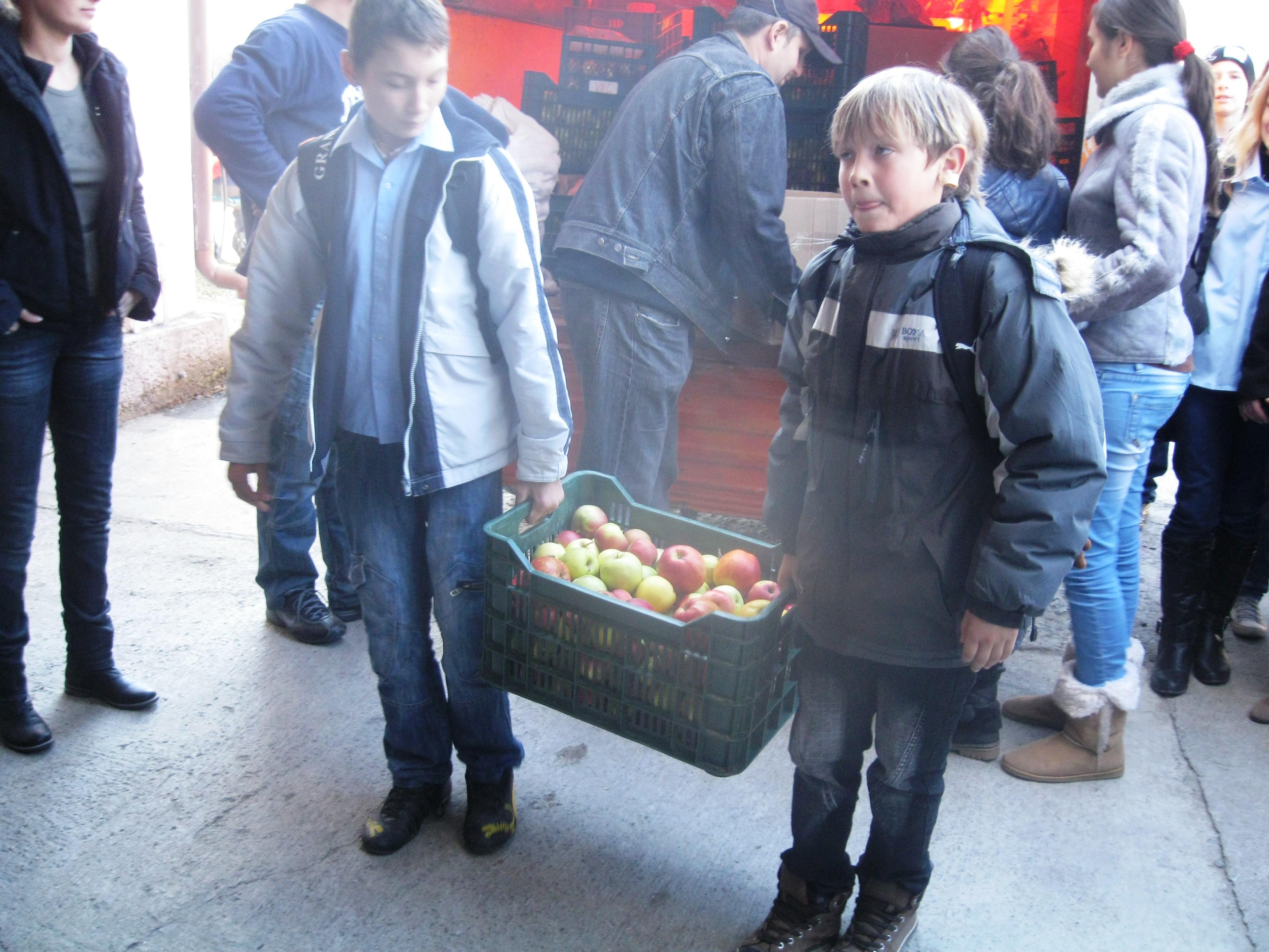 """Elevii de la Gimnaziul """"Serafim Duicu"""" din Tg Mureş au donat 800 de kg de legume si fructe cantinei sociale a Fundatiei Alpha Transilvana."""
