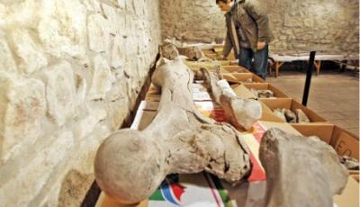 Conducerea Muzeului din Baraolt a finalizat studiul de fezabilitate pentru extinderea clădirii, în vederea amenajării unei secţii de paleontologie şi geologie.