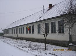 Cursuri suspendate la o şcoală în Covasna, din cauza viscolului !