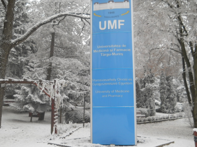 Câteva sute de persoane au semnat împotriva separării UMF.