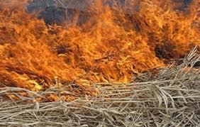 În judeţul Braşov peste 100 de hectare de vegetaţie uscată şi păşuni alpine au fost mistuite de flăcări