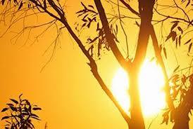 Valul de căldură revine, de mâine, în sudul şi sud-estul ţării