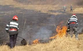Cinci incendii de pădure sau vegetaţie uscată în Harghita