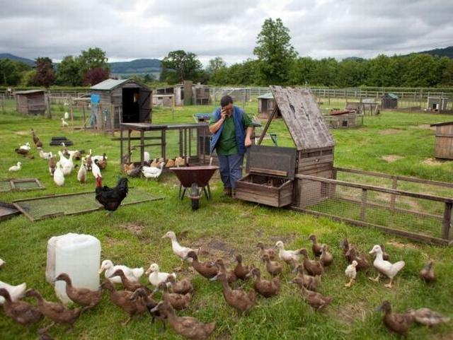 Ministerul Agriculturii va crea de la 1 iulie un fond mutual