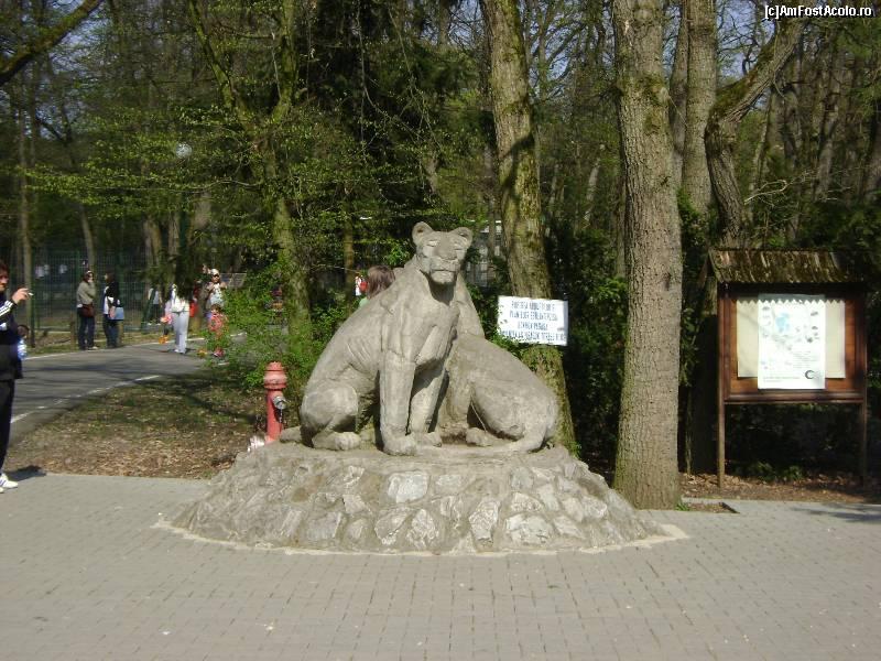 Copiii târgumureşeni sunt invitaţi mâine la Zoo pentru Carnaval şi Parada costumelor