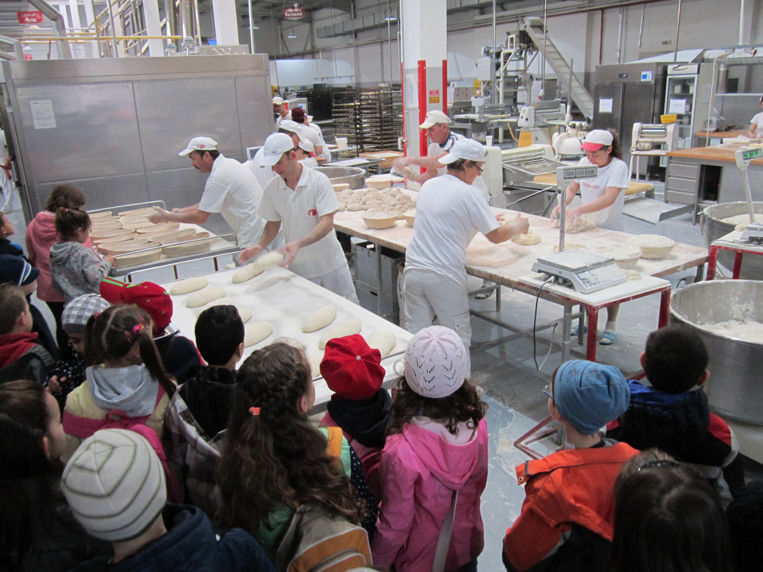 """Prichindeii târgumureşeni au învăţat cum se face pâinea în cadrul proiectului """"Şcoala altfel"""""""