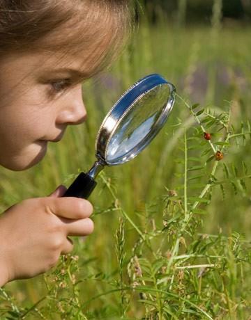 Medicii avertizează: orice ieşire la iarbă verde trebuie însoţită şi de protecţie împotriva insectelor şi căpuşelor