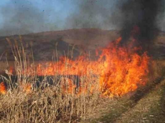 4 incendii de vegetaţie uscată în Mureş la acest sfârşit de săptămână