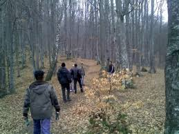 Două fetiţe aflate în staţiunea covăsneană Balvanyos s-au rătăcit ieri în pădurile din împrejurimi