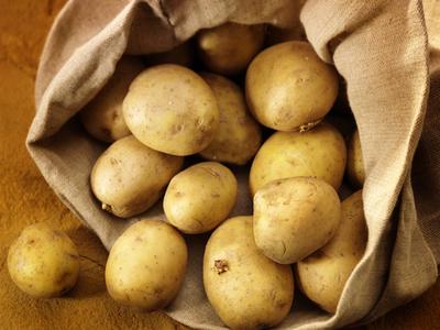 Producţia de cartofi din acest an va fi mai bună decât cea de anul trecut, estimează conducerea Direcţiei Agricole (DA) Covasna