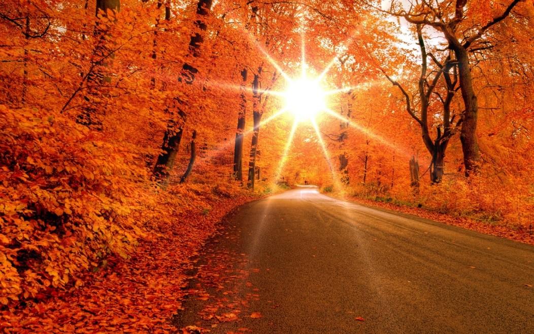 Vremea va fi frumoasã şi caldã şi mâine în Transilvania