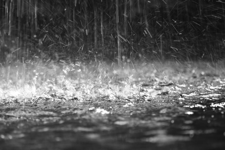 Cod galben de ploi