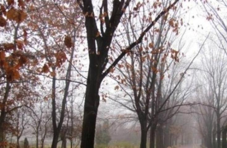 Vreme apropiatã de normalul termic al perioadei şi mâine în Transilvania