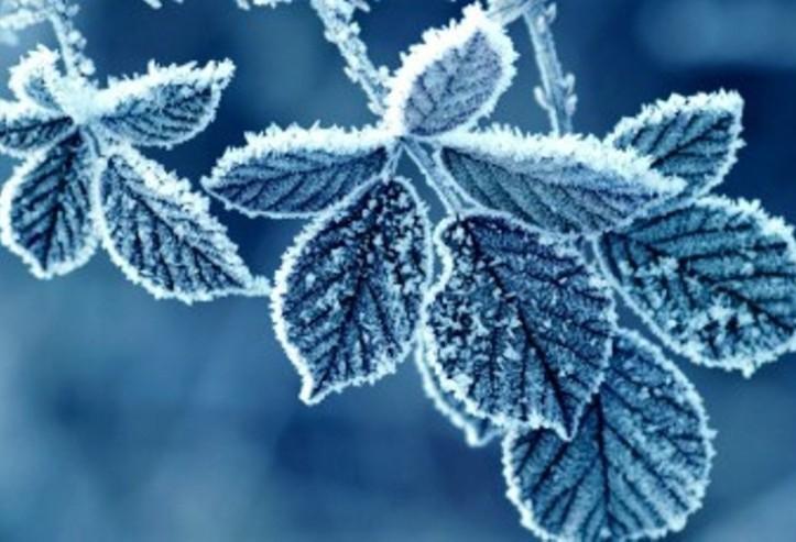 Vreme rece şi închisă in Transilvania