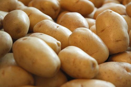 Producătorii de cartofi din Harghita se tem de faliment
