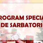program -sarbatori-2013