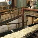 Fabrica-Zaharul-Ludus--cumparata-de-cel-mai-mare-producator-din-Franta