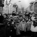 Survivors of Auschwitz mirror co uk
