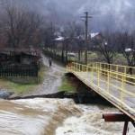 cod-galben-inundatii