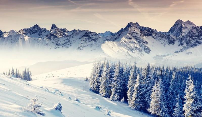 iarna-1