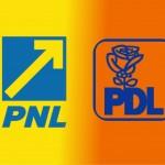 pnl-pdl unificare