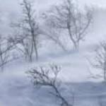 Ninsorile şi vântul puternic revin de astăzi în zona de munteviscol-si-ninsoare-820x300