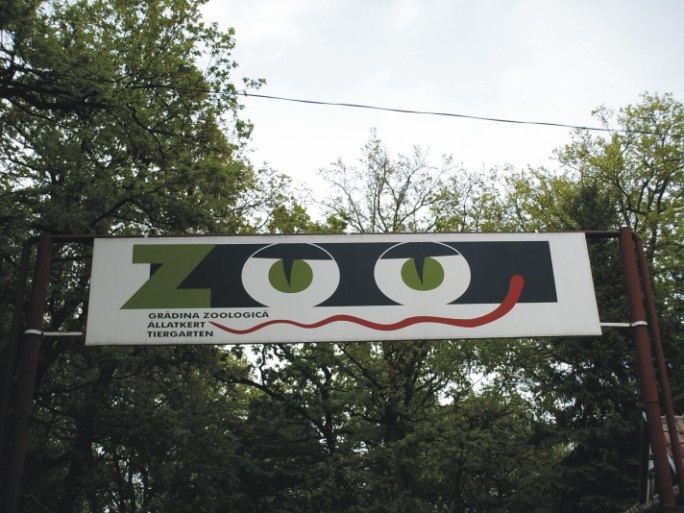 zoomuresprincipala