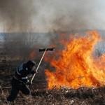 incendii vegetatie oradea-online ro
