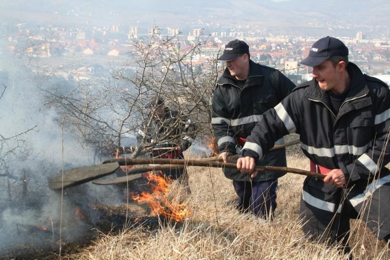 Foto: Stiri si informatii de ultima ora din judetul Hunedoara