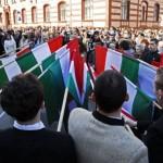 manifestari gandul info