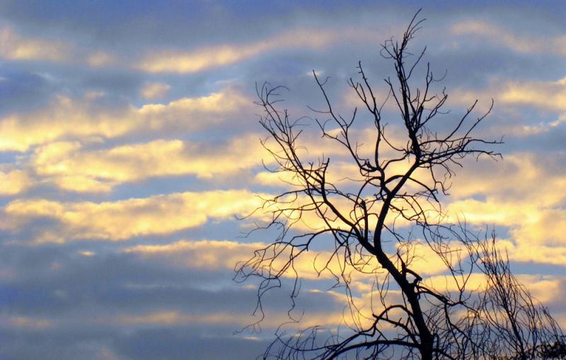 meteo cer senin cu nori putini redesteptarea ro