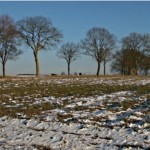 meteo_iarna cald bzi ro