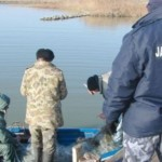 pescuit livearad ro