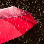 vreme-racire-ploi-vant