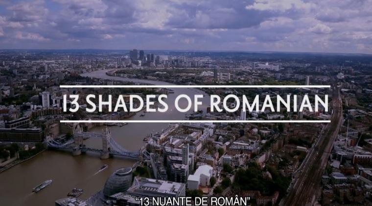 13 nuante de roman