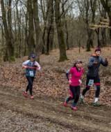 semimaraton  adevarul ro