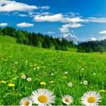 urmeaza-un-week-end-de-toamna-cu-temperaturi-de-vara-vezi-prognoza-meteo-170111