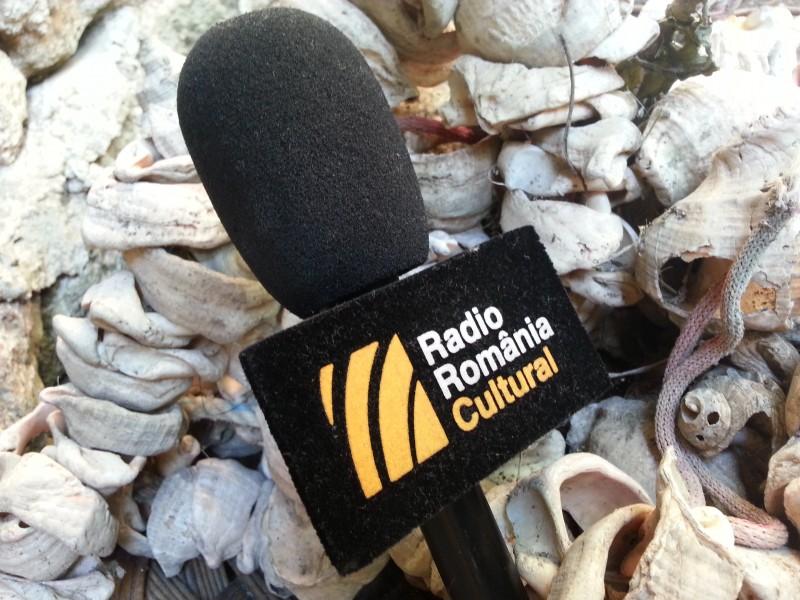 microfon RRC