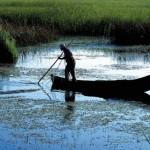 pescar_b