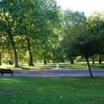 652x450_090348-ziua-europeana-a-parcurilor-2012