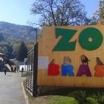 net-Inaugurare-zoo6-oct-2014-(65)(1)