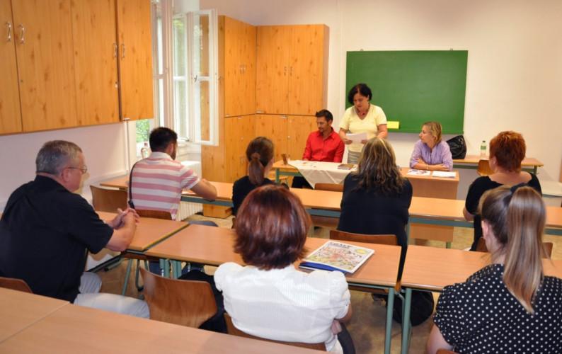 profesori definitivat
