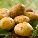 Cartoful,
