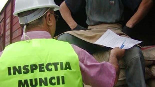 Foto: www.ziaruldinmuscel.ro