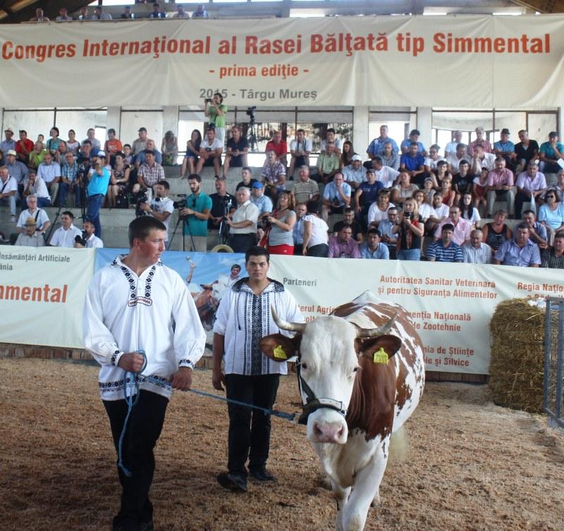 expo vaca