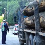 material-lemnos
